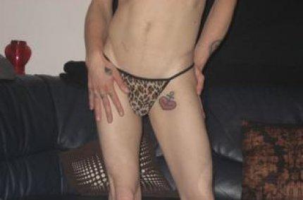 schwule pornos, gay chat rooms